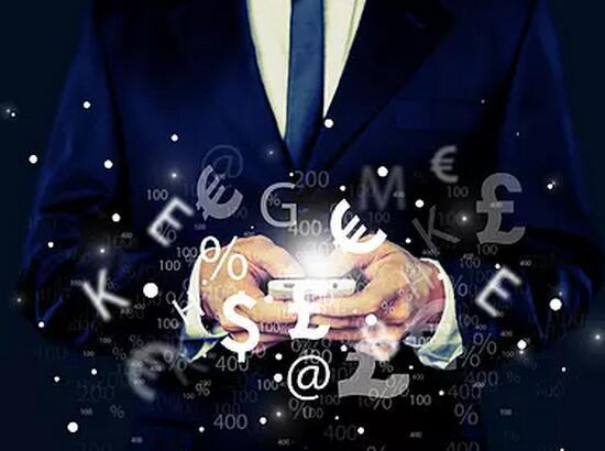 2017年上半年金融机构贷款投向统计报告