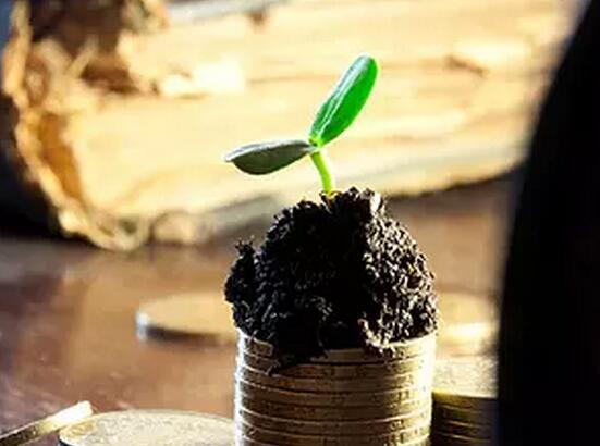 海外市场强势走高 QDII基金大涨现投资机会