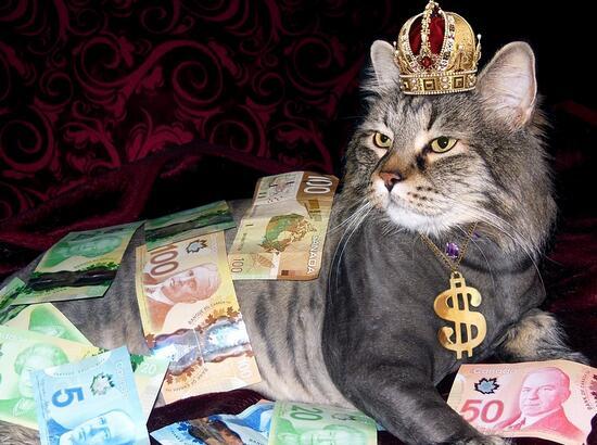 天猫双11花呗千亿信用提额 钱从哪里来?