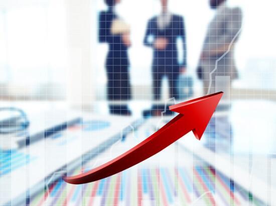 外购供应链子公司爆雷 九有股份逾期贷款逾2亿