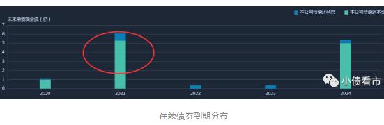 """""""宁夏风电巨头""""被列入观察名单  曾发生2.5亿债务展期"""
